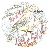 Vintage Birds Of The Month