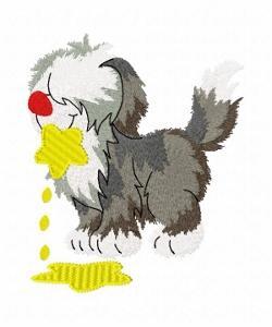 Jason Shepherd dog