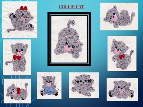 Collie Cat